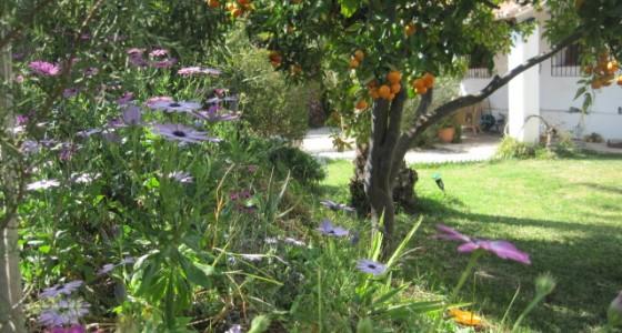 <!--:en-->The gardens of the Escuela in Winter<!--:-->