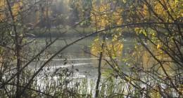 <!--:en-->Day trip, walking and swimming: La Alcaicería, Los Ventorros and El Pato Loco<!--:-->