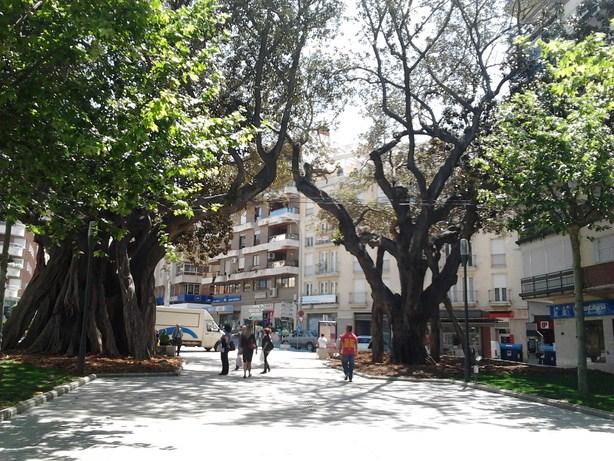 trees4 (Copy)